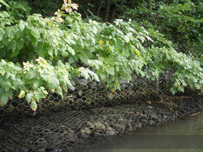 生态石笼网